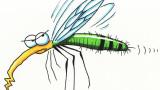 mosquito-clip-art-mosquito-clip-art-9